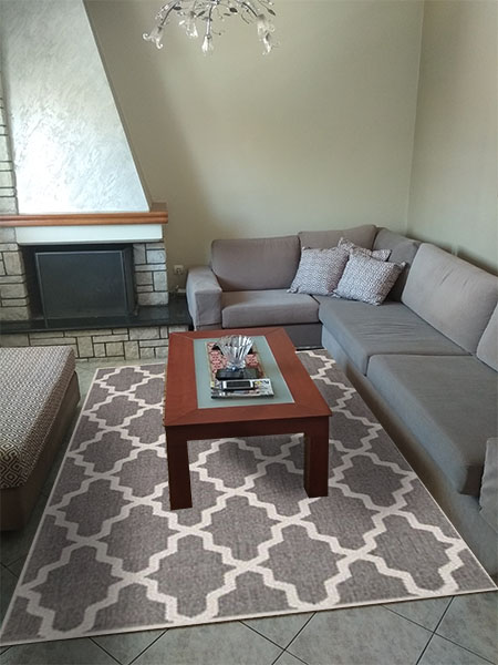 evi living room grey rug 01